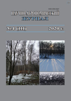 nazh-tit-2020-4